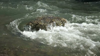 fast-flowing-river-moves around-rock