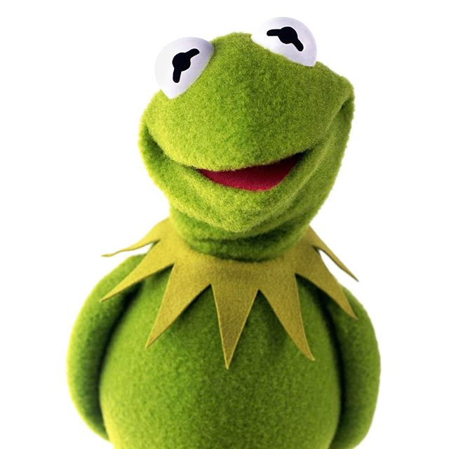 Happy birthday to our favorite green fellow, Kermit the Frog! May you continue to get wiser and more handsome with age. (Fun fact: It's also our Founder and Lead Photographer Stephani's birthday. What d'ya know, green minds do think alike!) #EasyBeingGreen #HappyBirthdayKermie