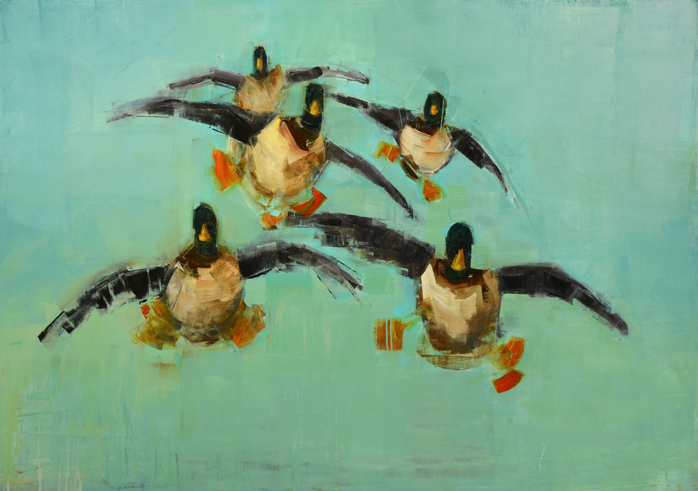 LANDING MALLARDS   -PRIVATE COLLECTION-  50 x 70 inches  oil and wax on linen