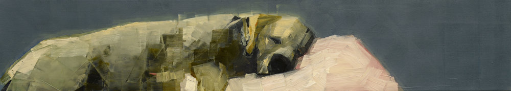 PINK PILLOW   -PRIVATE COLLECTION-  12 x 64 inches  oil and wax on linen