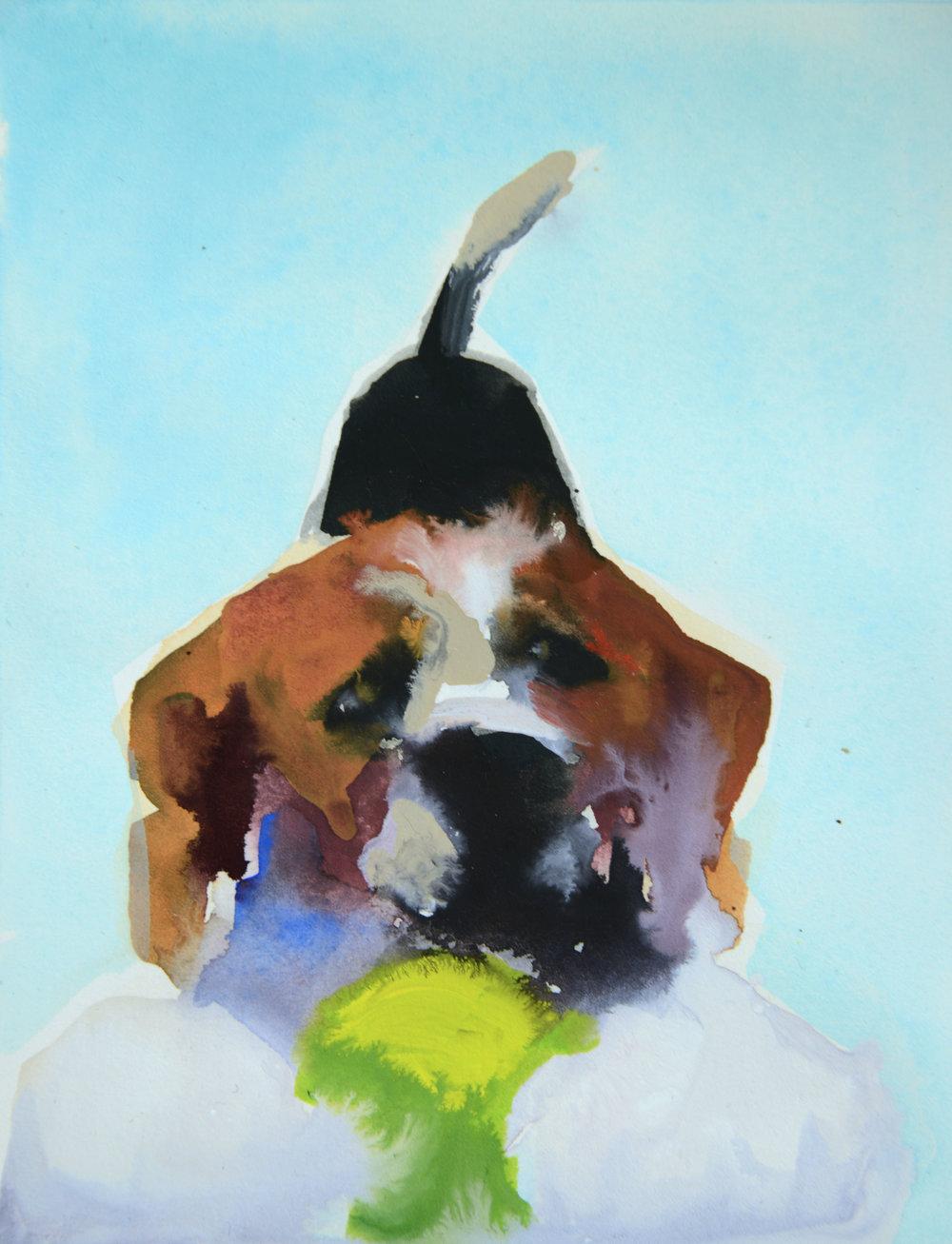 Rebecca_Kinkead_Beagle with the Ball.MM on paper_inset on 11x7.5.jpg