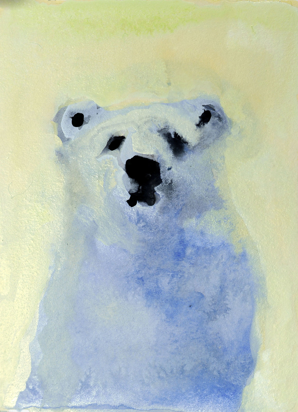 REBECCA_KINKEAD_polar bear no. 4_4x3 inset on 11x7.5 paper.jpg