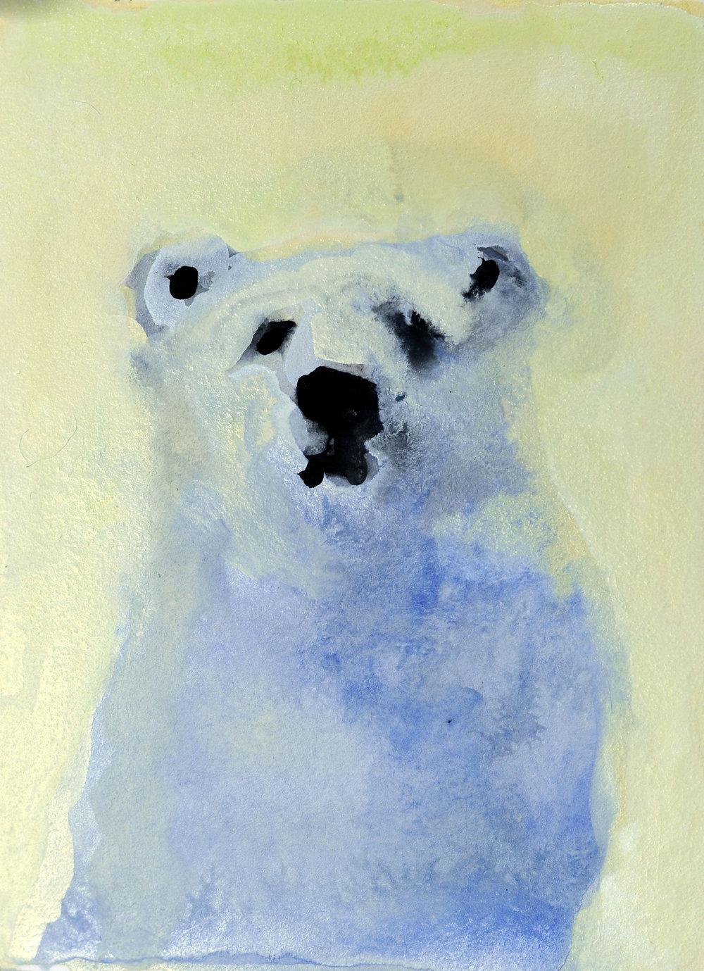REBECCA_KINKEAD_polar bear no. 4_4x3 inset on 11x7.5 paper.jpg
