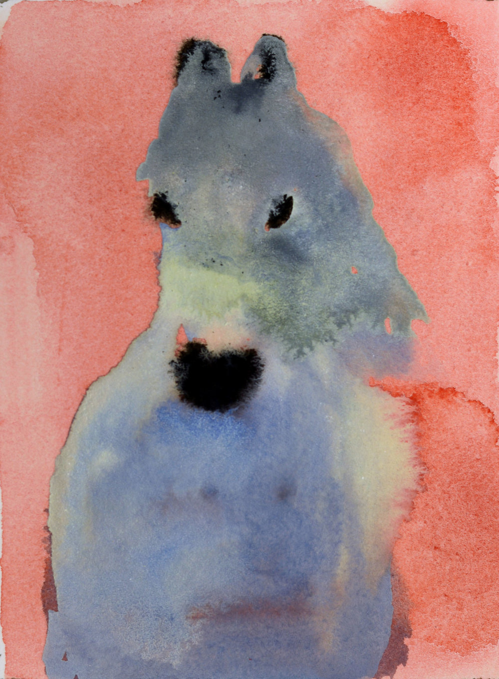 White Horse (on Pink)_4x3 inset on 11 x 7.5 paper.jpg