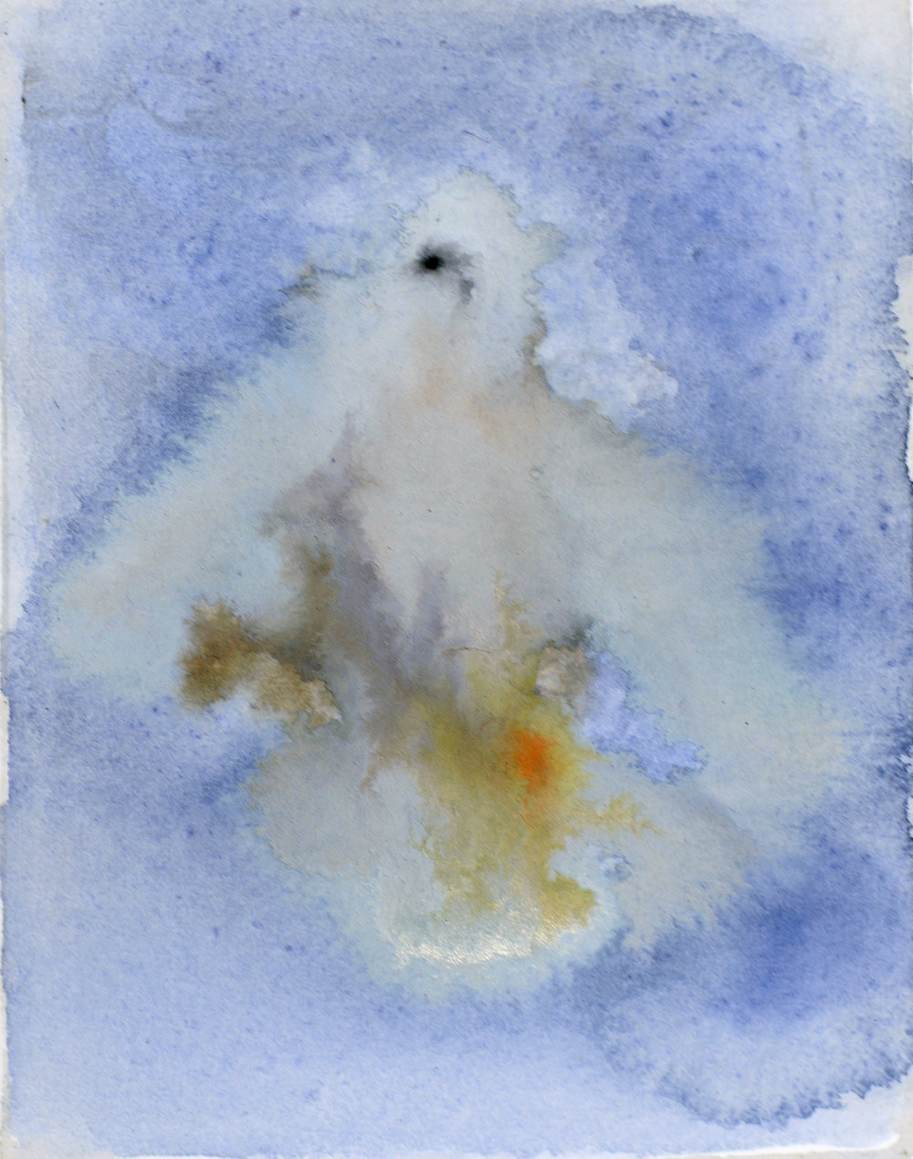Rebecca_Kinkead_White Dove (Day)_4x3 inset on 11x7.5.jpg