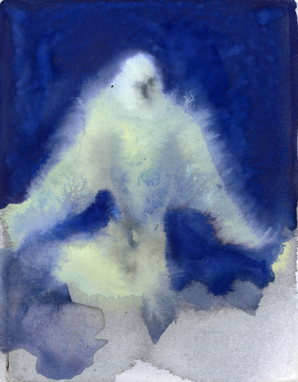 Rebecca_Kinkead_White Dove (Night)_4x3 inset on 11x7.5.jpg