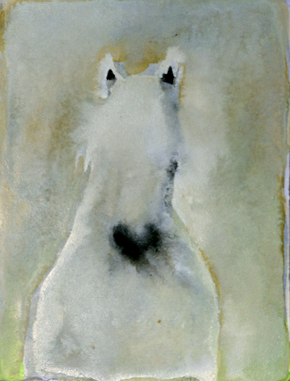 White Horse (on White)_4x3 inset on 11 x 7.5 paper.jpg