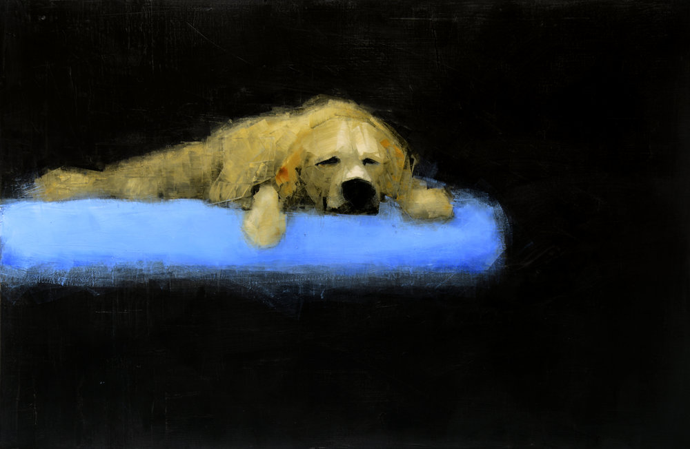 YELLOW DOG DREAMING (BLUE BED)   -PRIVATE COLLECTION-  40 x 60 inches  oil and wax on linen