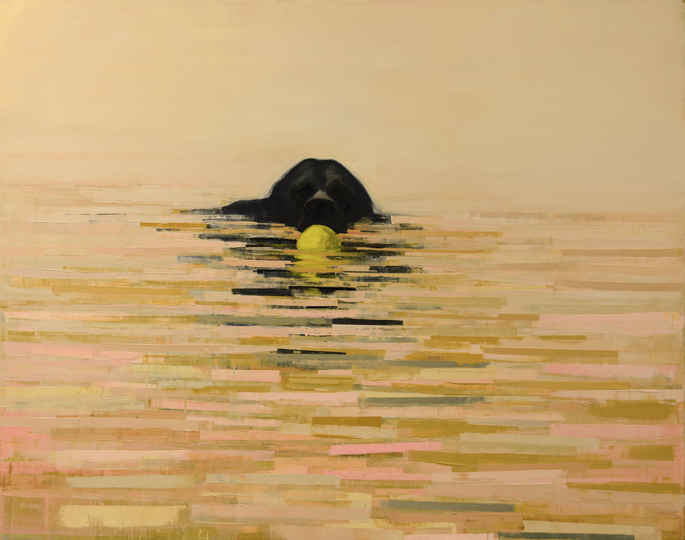 Fetch (Sunrise) _48x60.jpg