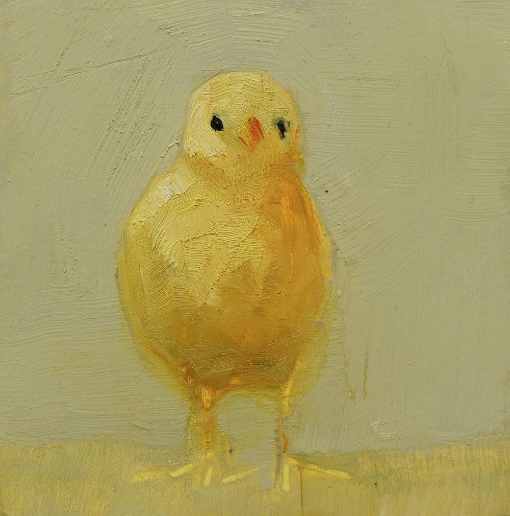 Chick_6x6.jpg