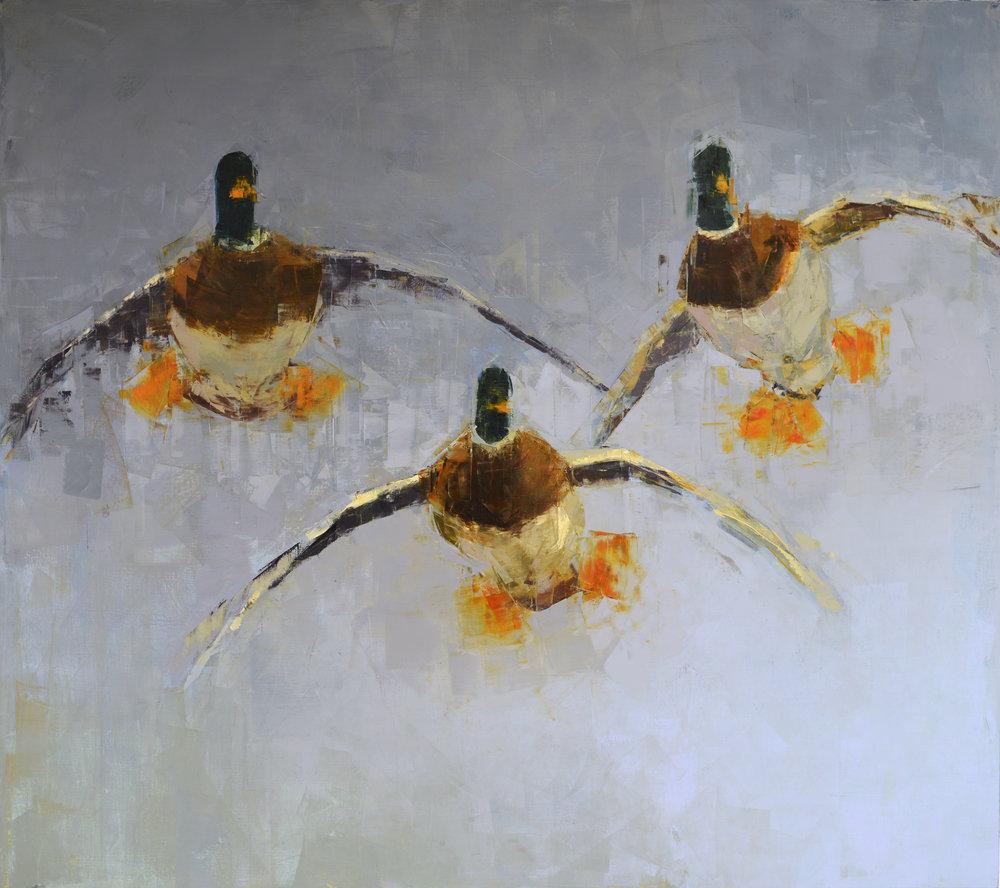 Drakes (Landing)_48x54.jpg