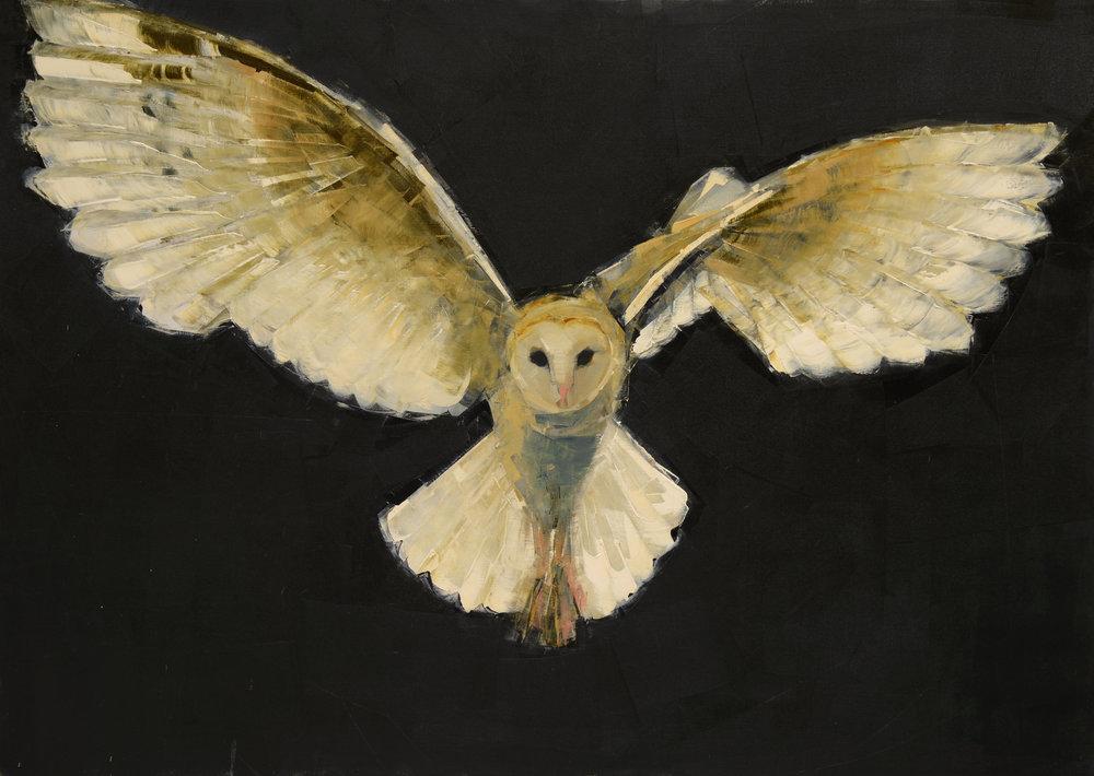 Barn+Owl+in+Flight_50x70.jpg