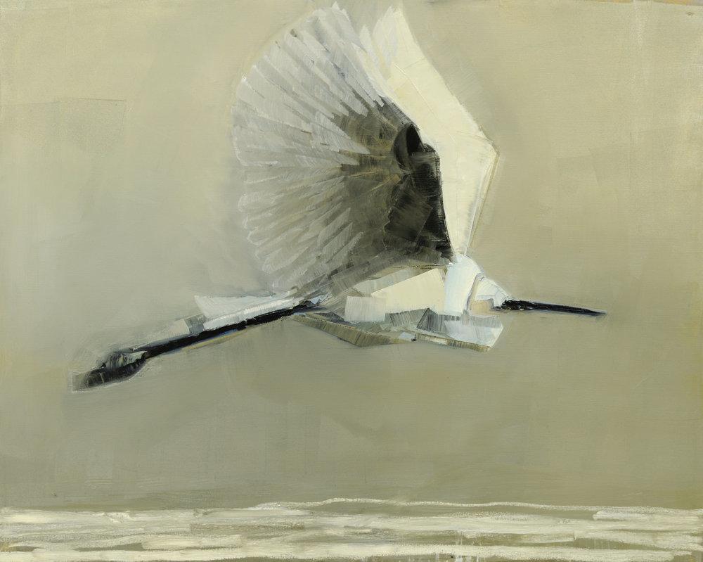 Egret+in+Flight_48x60.jpg