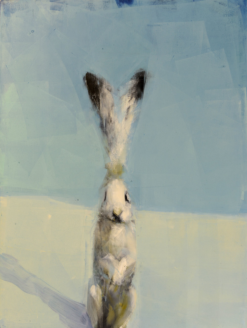 Hare with Shadow_40x30.jpg