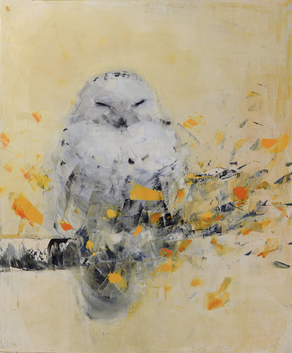Snowy Owl dreaming in Gold_36 x 30.jpg