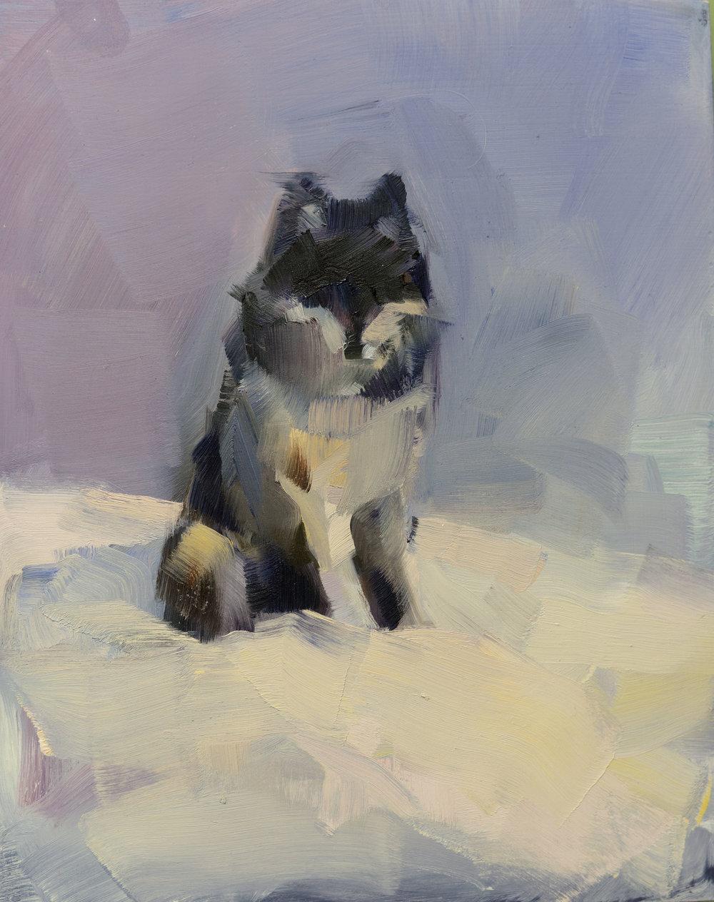 GREY WOLF (EVENING)_20X8.jpg