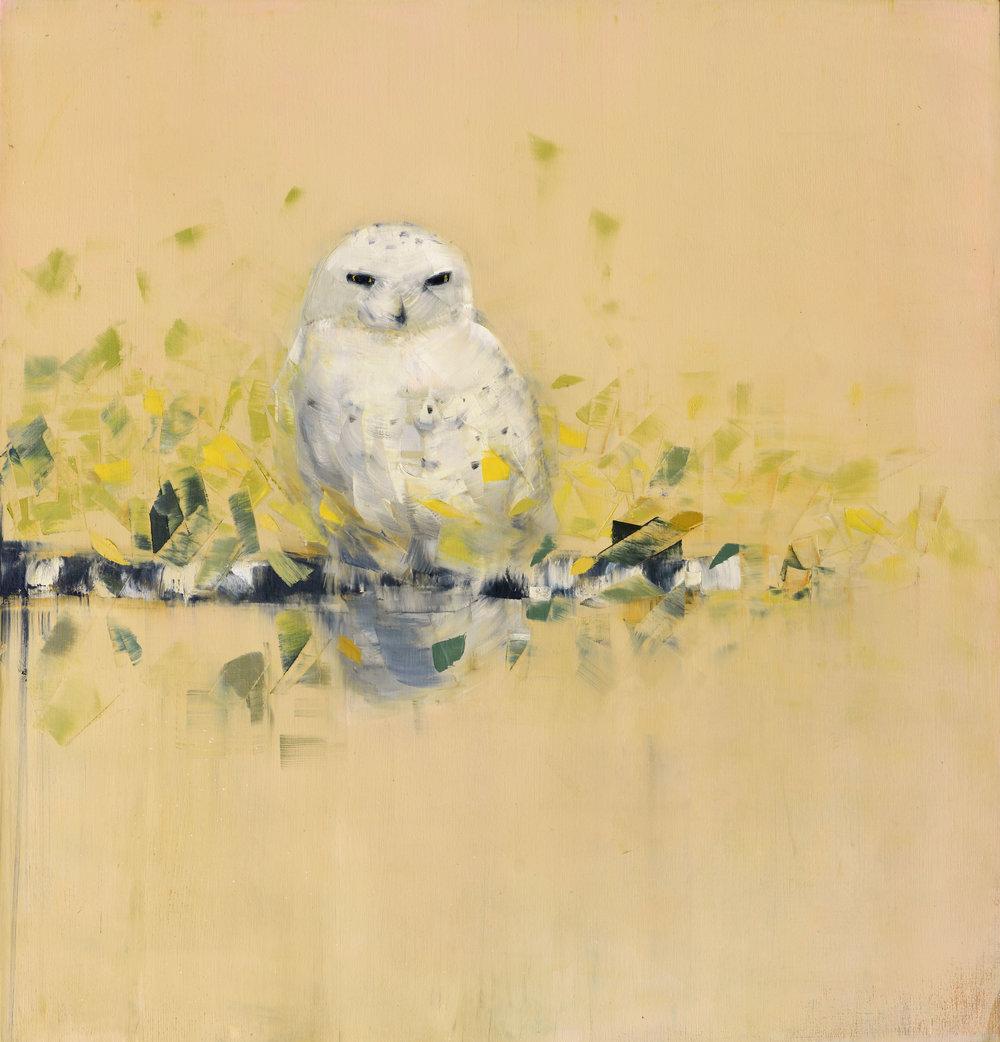Snowy Owl (Green Leaves).jpg
