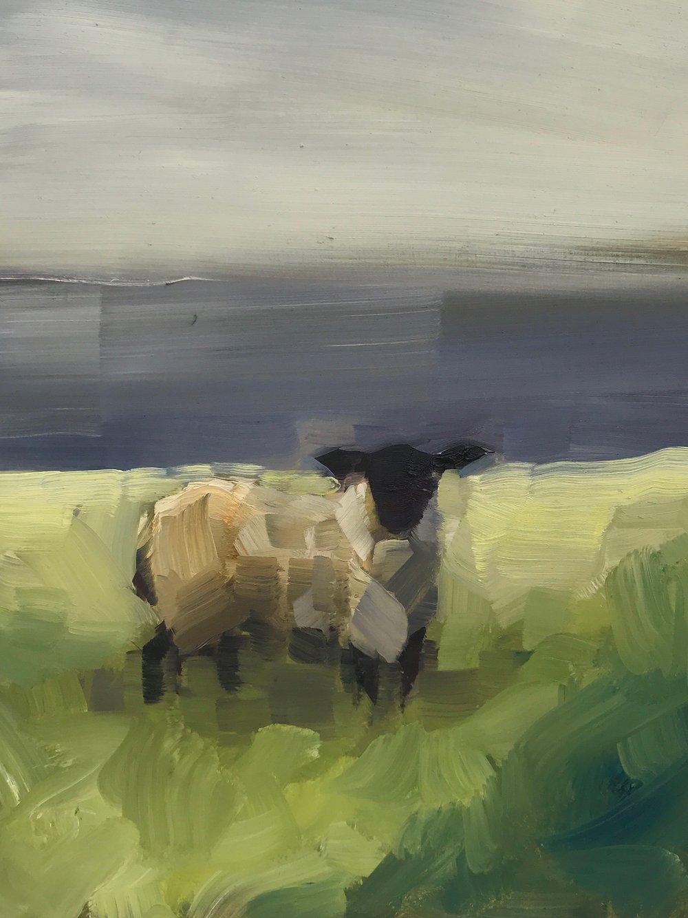 Black Sheep (Greener Grass)_10x8.jpeg