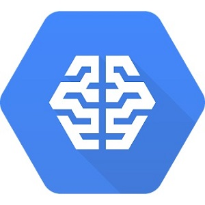 Google Cloud Machine Learning Platform