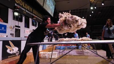 Joel Hanare - open woolhandling winner