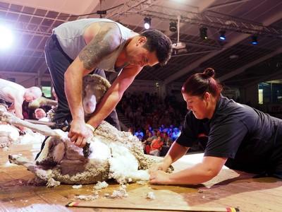 Keryn Herbert NZ-Aust Woolhandling Test