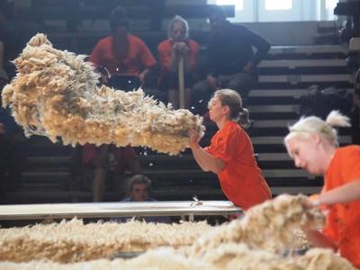 woolhandling03.jpg