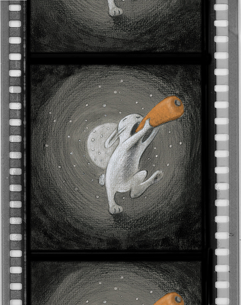 24 Rabbit carrot film.jpg