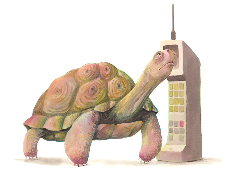 turtlephone.jpg