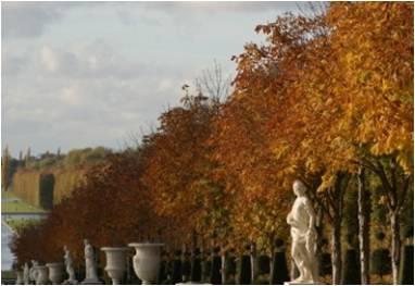 Parc de Versailles en automne