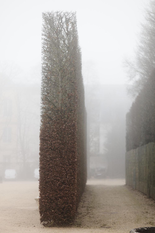 Versailles trianon automne brume (36).jpg