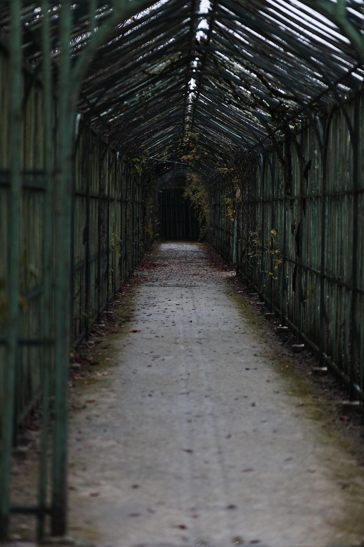 Versailles trianon automne brume (31).jpg