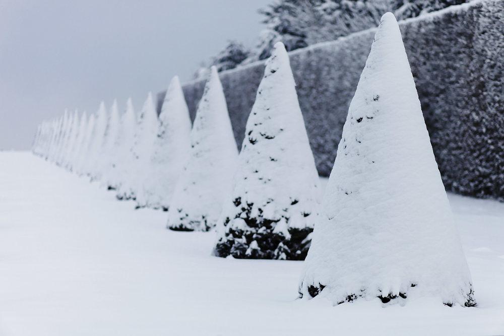 Versailles neige hiver (29).jpg