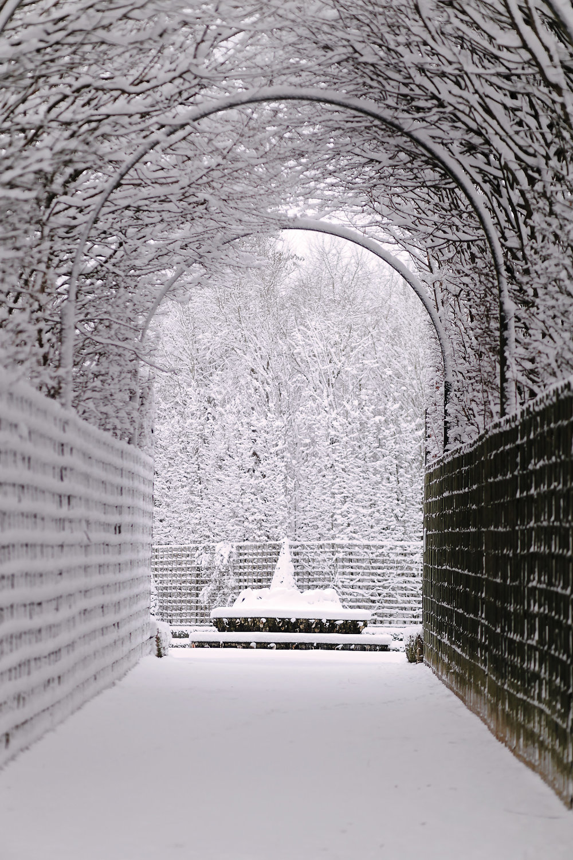 Versailles neige hiver (54).jpg