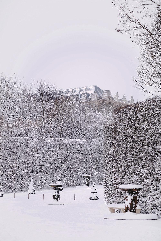 Versailles neige hiver (53).jpg