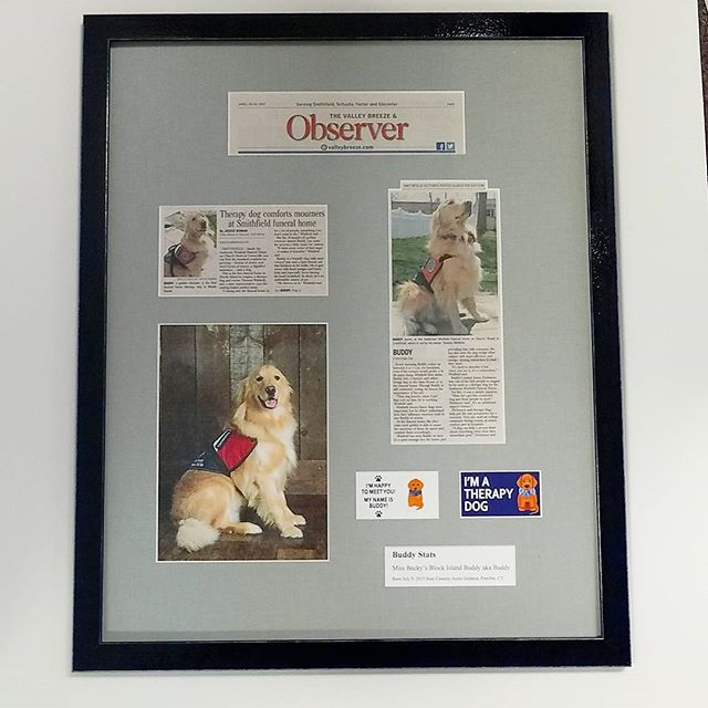 This 7 Window collage, pays a fitting tribute to BUDDY, who's natural insticts comfort mourners at the Anderson Winfield Funeral Home.  The mat is woven fabric. The wood frame is an indigo polished lacquer. #goldenretriever #therapy #therapydog #funeral #lynartframing #loveyourwalls