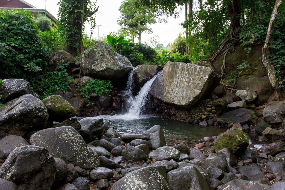 Wallilabou Falls Scenes-0977.jpg