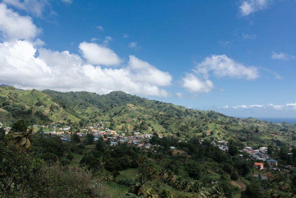 Greiggs Community Plateau.