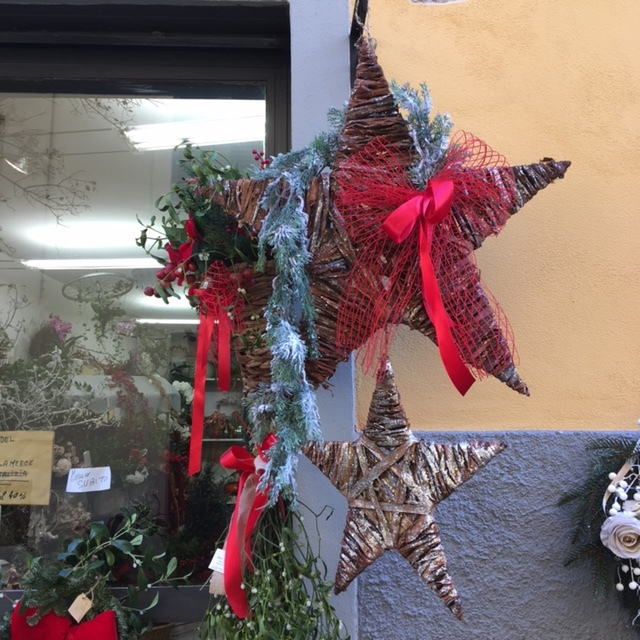 The window of a flower shop, Lucca, December 2016.