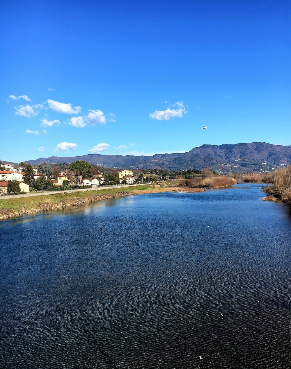The River Serchio, January 2017.