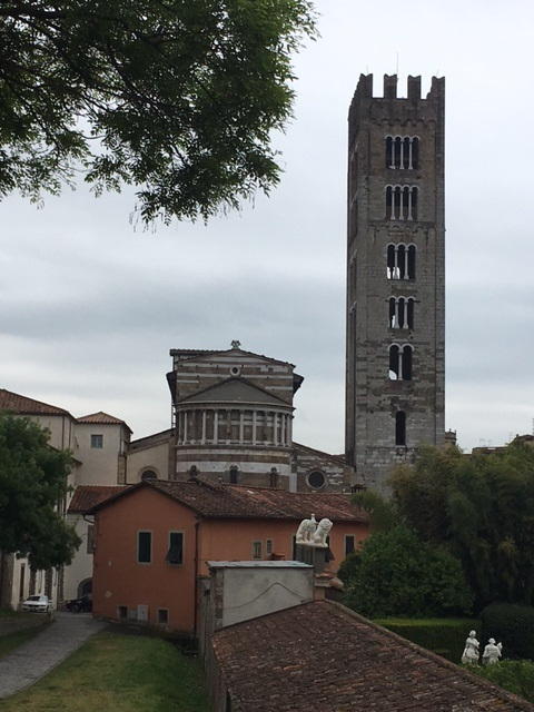 The view from one of my favorite places to walk - on the wall in Lucca, Italy.