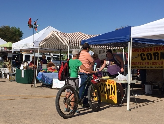 The Sunday grower's market in Corrales, NM