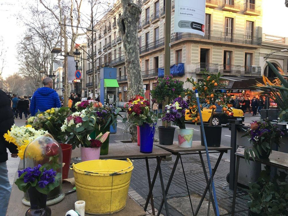 Flowers for sale along La Rambla