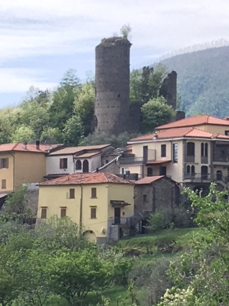 The tower and castle ruin in Treschietto, Bagnone.
