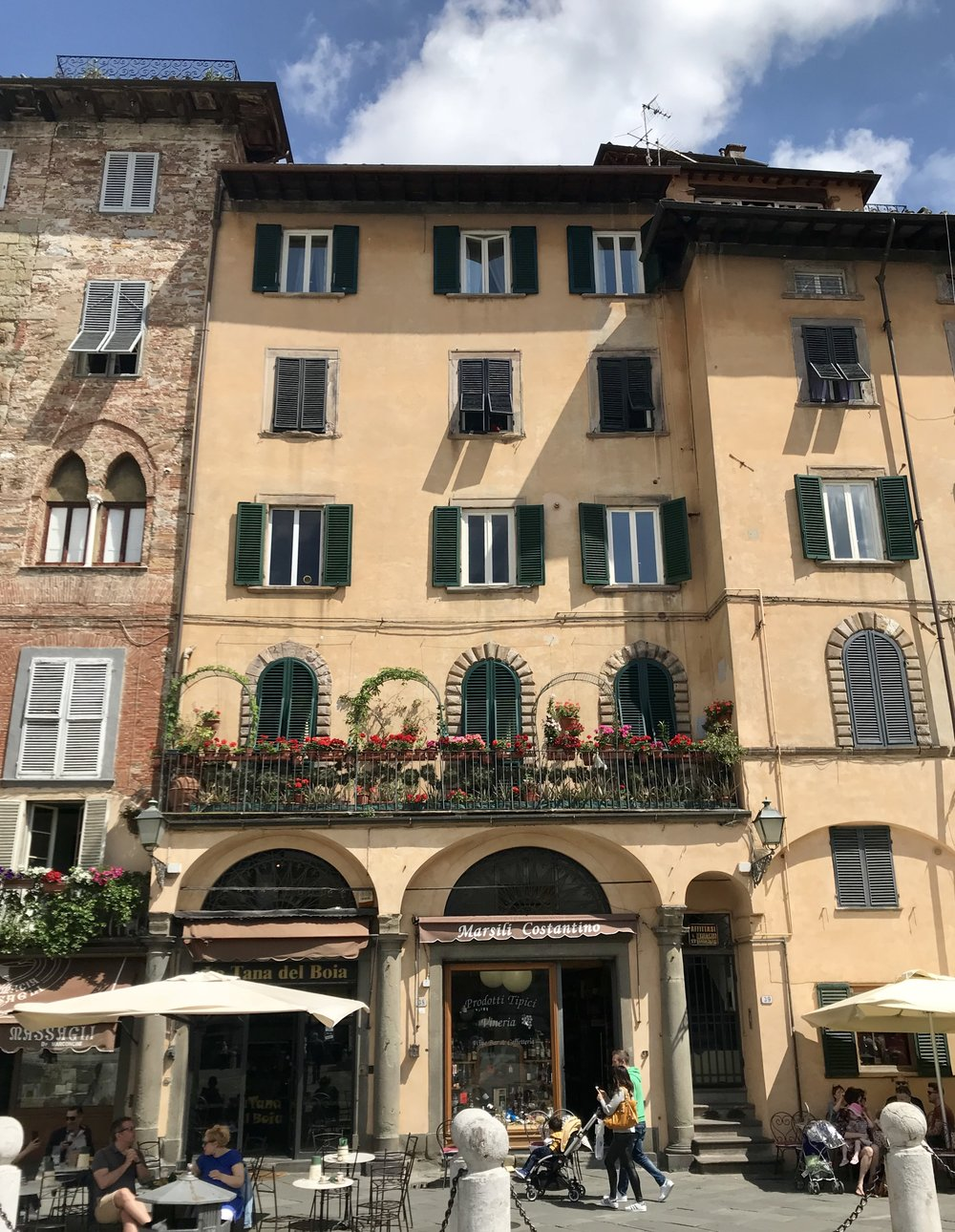 These flowers can be enjoyed by the thousands of visitors to Piazza San Michele in Lucca as the building fronts the square.