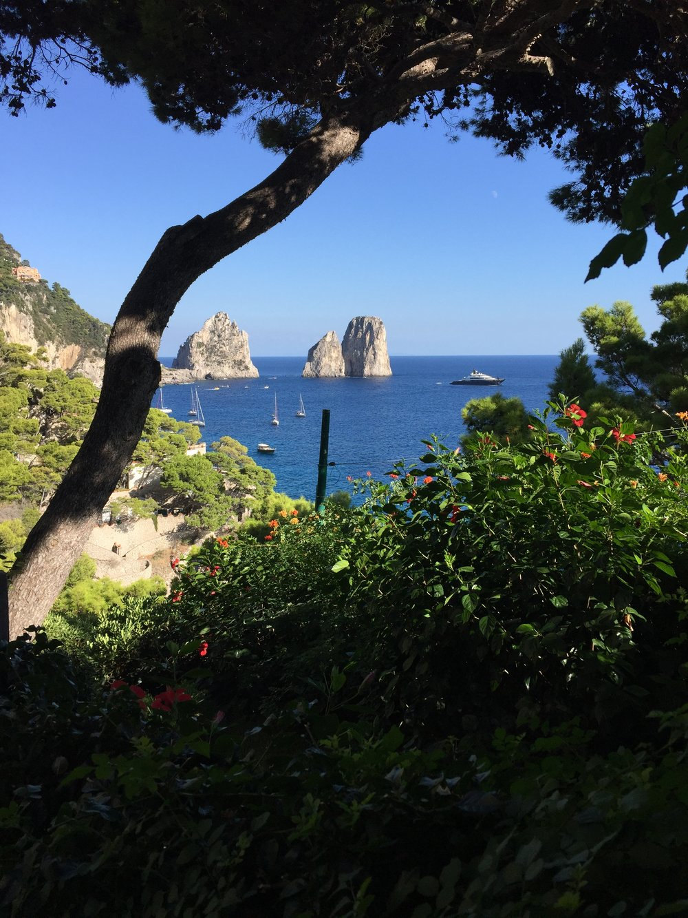 The views from Capri are beyond compare. These are the famous faraglioni (rock formations eroded by waves) off the coast of the island.