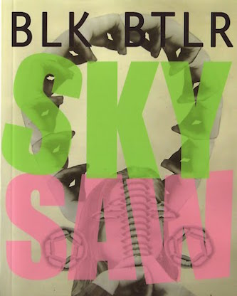 Sky Saw   (Tyrant Books, 2012)  -  review at Publishers Weekly  -  review at LA Review of Books  -  review at The Nervous Breakdown  -  review at Heavy Feather Review  -  review at Verbicide  -  interview at Publishers Weekly  -  'field guide' at Creative Loafing  -  'book notes' at Largehearted Boy
