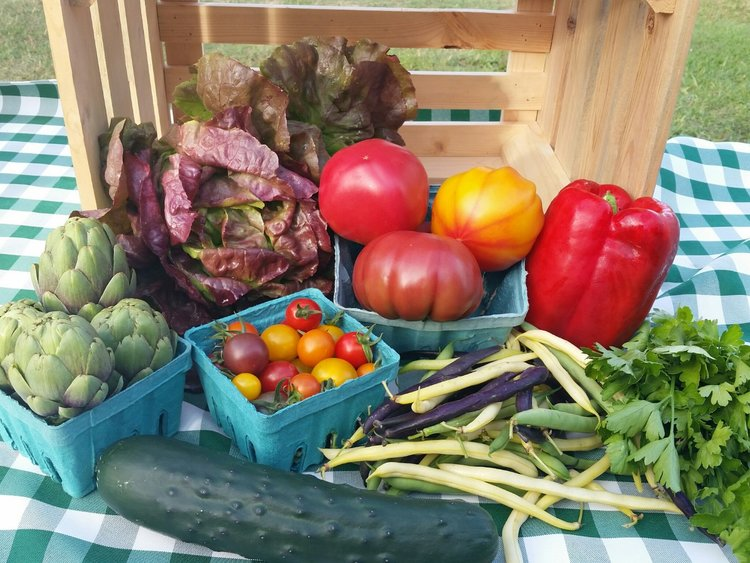 Traditional Share   A convenient, pre-packed box filled with the farmer's choice of vegetables each week. The seasonal changes make each box a little bit like opening a Christmas gift; a great choice for those that like getting a bit adventurous in the kitchen.