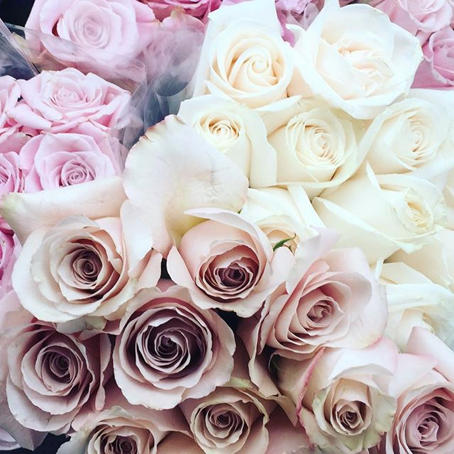 Sunday delivery 🌹🌹🌹 . . . . . #roses #floral #shabbychic #romantic #gardening #garden #greenthumb #pastel #blush #rosegold #paris #parisienne #parisstyle #frenchgarden #frenchcountry #maisonladuree #bloggerstyle #bloggerlife #chanel #cottagestyle