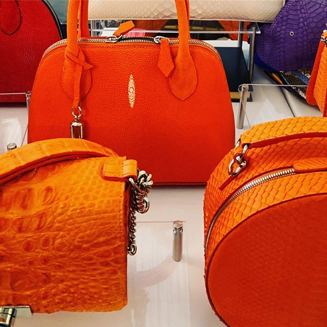 Orange 🍊 is the hot 🔥 color for Spring and it was especially evident where almost every @kathrynallencouture handbag sold out 💥. It was a very fulfilling and successful event at the Big Dog Ranch Rescue charity event held at Mar-A-Largo Club, in Palm Beach.  Thank you to everyone who attended and supported this amazing charity that finds homeless fur babies, a forever home. 💗🐕 #pink #dogrescue #foreverhome #palmbeach #realoutfitgram #whatiweartoday #stylediary #stylefile #styleblogger #classyandfashionable #fashionigers #ootdstyle #lookoftheday #luxuryblogger #italianblogger #italianfashion #interior design #DubaiFashion #europeanfashion #fashiongirls #GirlBoss #inspiration #WhoWhatWear #Bloggerstyle #Timeless #Cottagestyle #Classic #Editorial #blogger #palmbeach