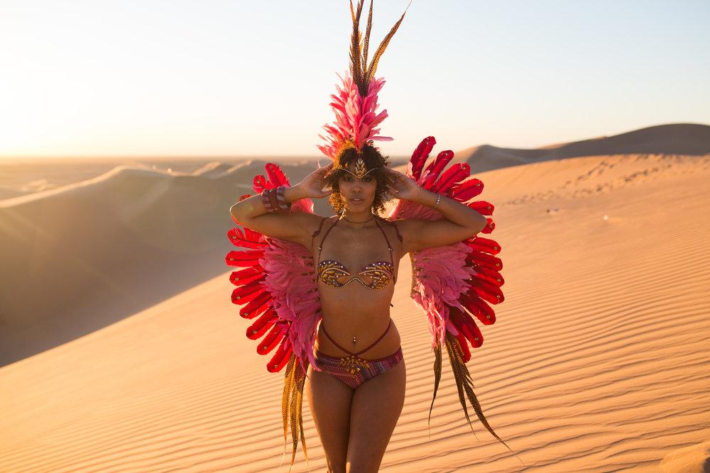 Carnival - Desert Sand Dunes - AROSE TRAVELS